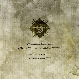 Cece Giannotti:  Pivot Point (2010) - Christian Cassan Credits:  Co-Producer Mixer Additional Engineer  Multi-Instrumentalist