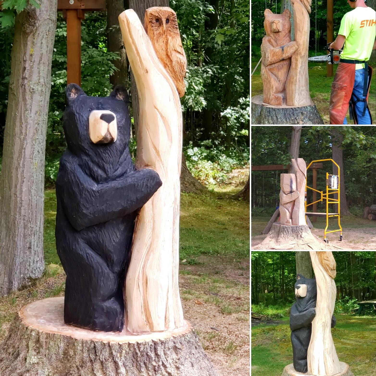 Bear & Owl Carving