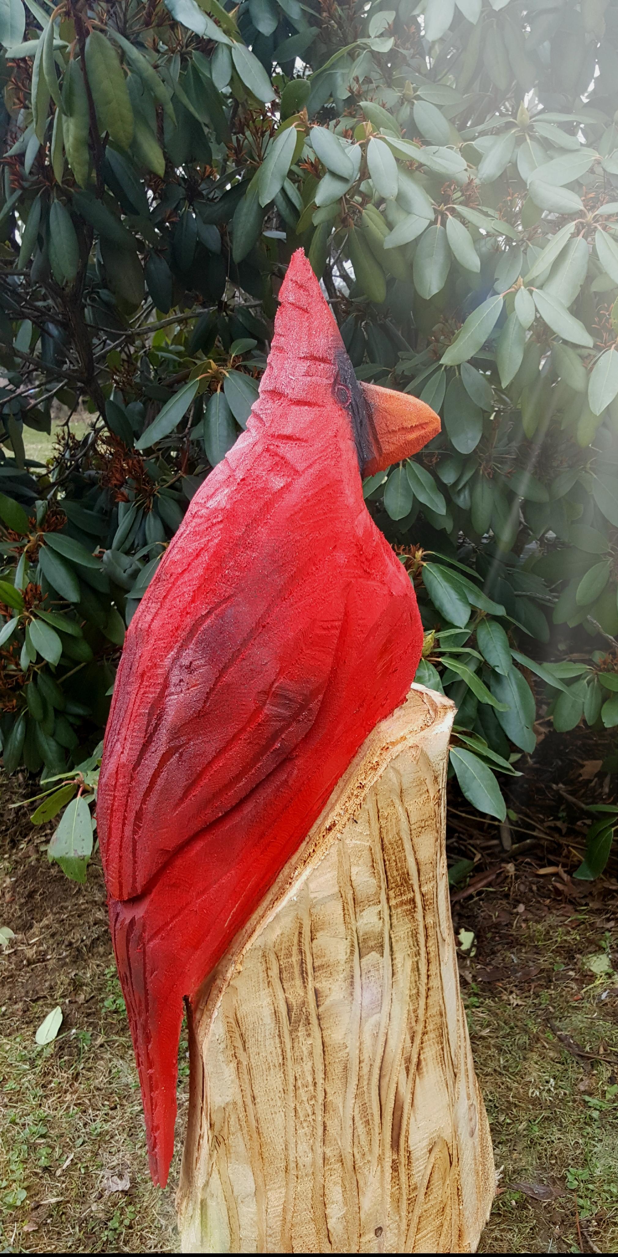 Cardinal Carving