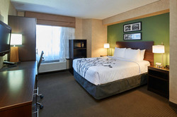 Room with 1 Queen Size Bed