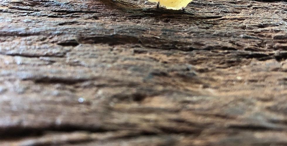 Calcita Amarela brinco de prata