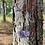 Thumbnail: Ametista drusa corrente de prata curta