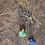 Thumbnail: Crisopázio e Lápis Lazuli escapulário moldura de prata
