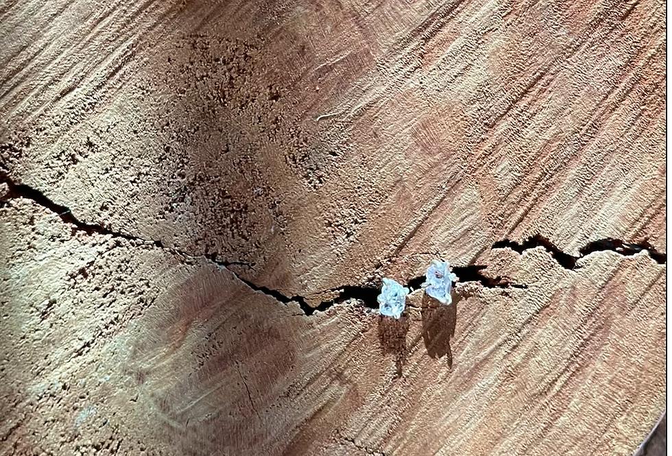 Ametista brinco de prata pequeno