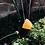 Thumbnail: Calcita Amarela corrente de prata longa