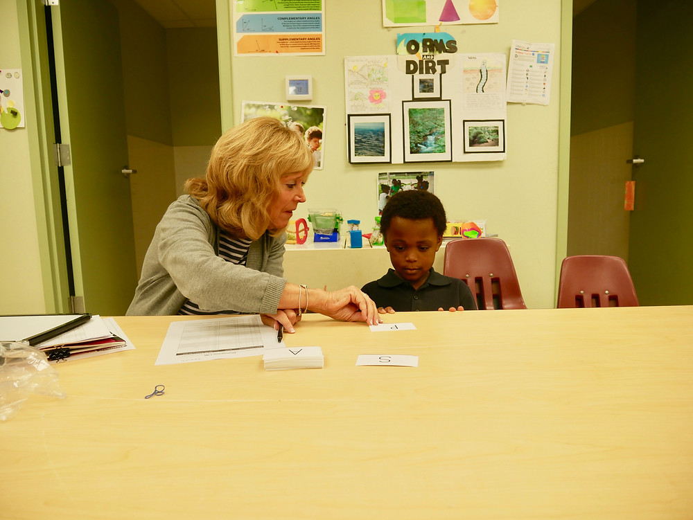 literacy, reading specialist, reading recovery, literacy training, reading training, access to literacy