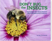Don't Bug the Insect