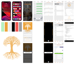 Tenanted App Storyboard