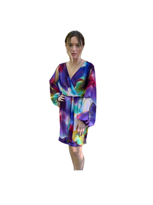 Suzi Chin Multi-Color Dress
