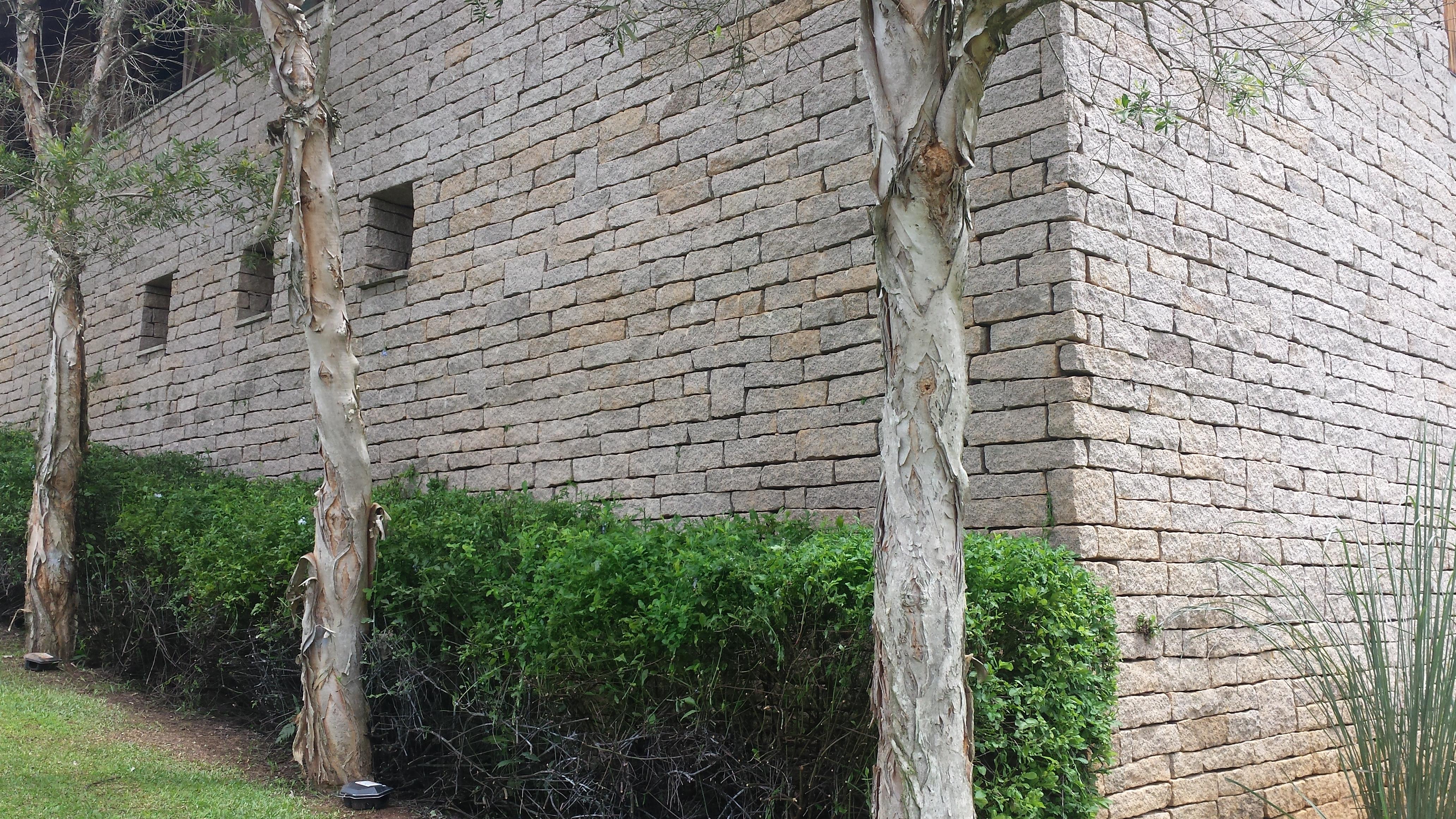 Pedras Capricórnio