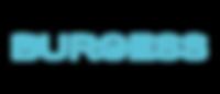 4261-LYBRA_Web_Burgess_Brand-Colour-RGB_