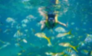 снорклинг острова Фукуок