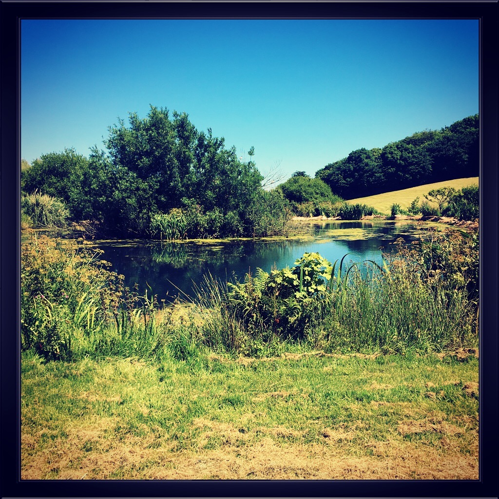Beryls Pond