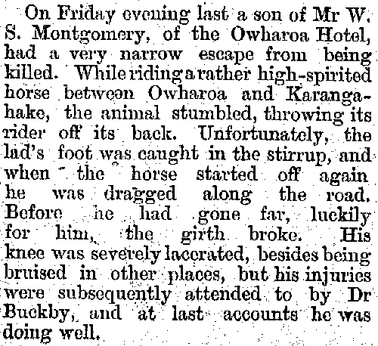 Mr Montgomery's son has a horse riding accident