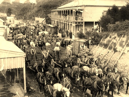 Horse teams outsideThe Waikino Hotel_edited