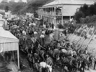 Horse teams outsideThe Waikino Hotel.jpg