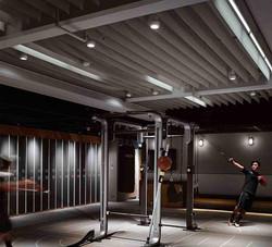 Boxing Plus Wellness Center