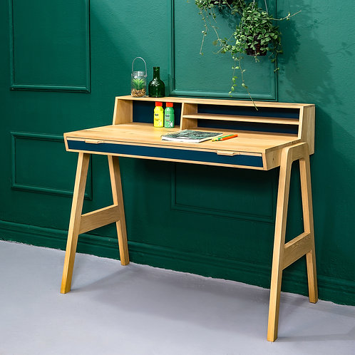 Mr.Marius- Pelotte Desk
