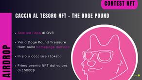 The Doge Pound - Caccia al Tesoro