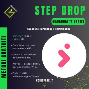 Step Drop.png