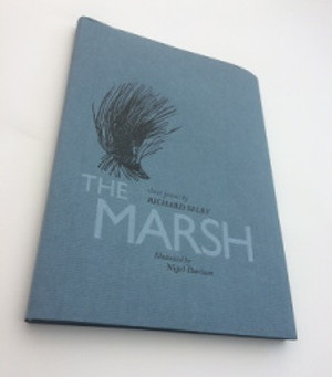 The Story Behind the writing – The Journey to The Marsh