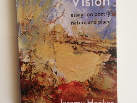 Ditch Vision: essays on poetry, nature and place by Jeremy Hooker – review by Ian Brinton