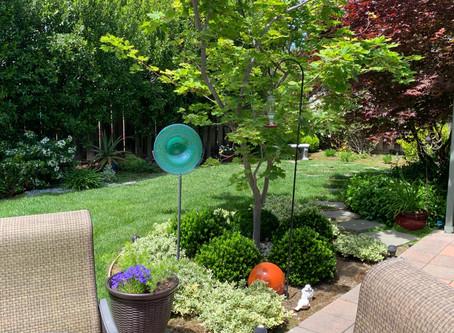 How do I make my garden more interesting?