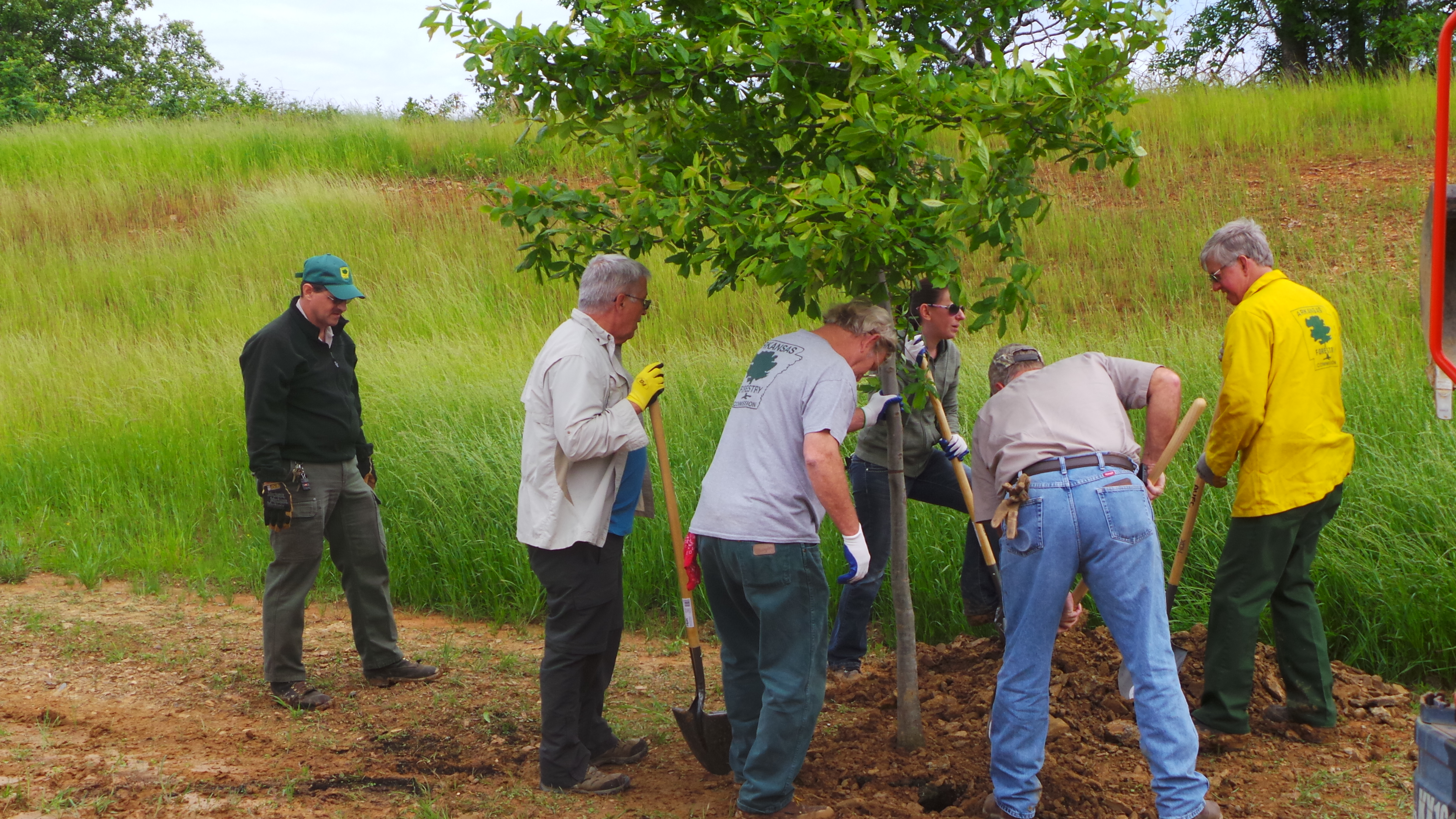 2015 Softball Complex Tree Planting Grant