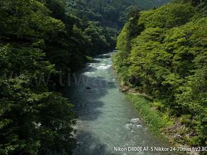 奥多摩の渓流