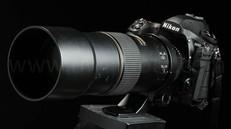 AFS Nikkor 300mm f4D、堅実サンヨン、レンズレビュー