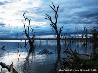 ナクル湖、水位の上昇で様変わりした湖