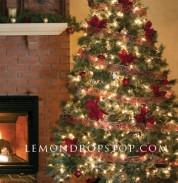 Fireplace_Christ_504ff66d365fd_250x250.j