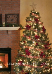 Fireplace_Christ_504ff66d365fd_250x250.j