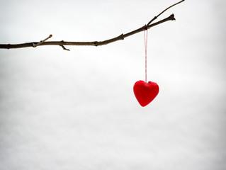 Heartbreak & Gratitude