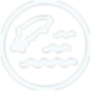 fish-passage-icon_512px.png