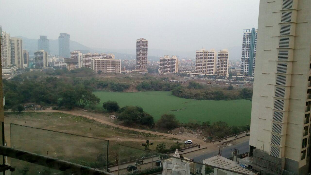 Arista View