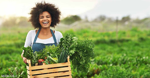regenerative-food-and-farming-fb.jpg