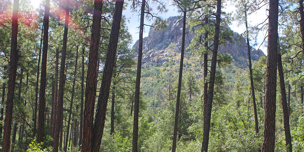 Hike Prescott