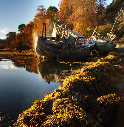 'Old Wrecks' in Salen Bay, Isle of Mull