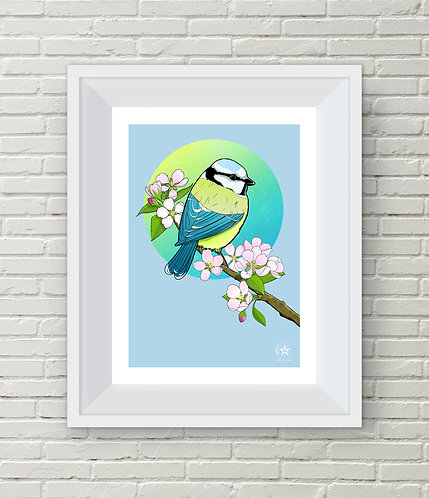 'Blue Tit' Limited Edition A3 Giclee Print