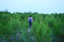 Ugroshore Trekking