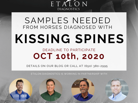 Kissing Spines Samples Needed