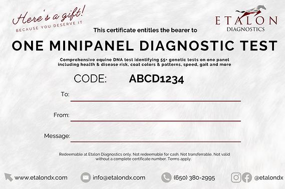 Minipanel Gift Certificate Etalon .png