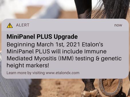 MiniPanel PLUS Upgrade Coming March 1st, 2021