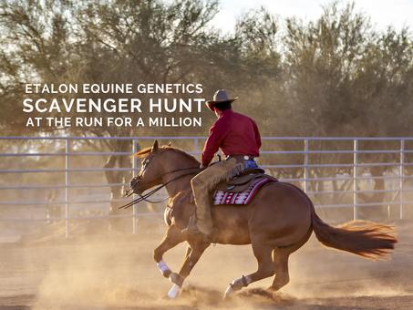 Etalon's Scavenger Hunt at The Run For a Million