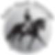 KHM DRESSAGE Logo USDF.png