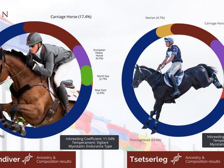 Let's dive into Olympic half-brothers' DNA! Tsetserleg vs. Vandiver Genetic Deep Dive