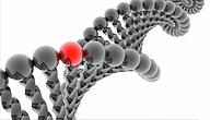 DNA Helix EtalonDX Site.png
