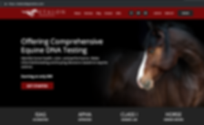 EtalonDx Start Here for Horse DNA Testing