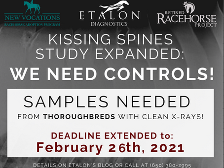 We Need Controls - Kissing Spines Study Expanded